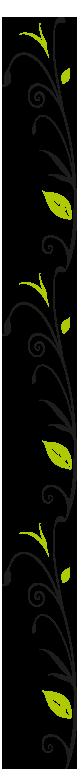 branches-verti